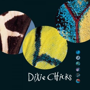 dixie chicks fly