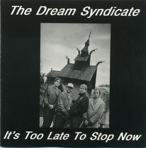 dream syndicate it's too late