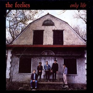 feelies only life