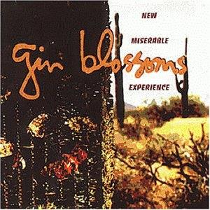 GinBlossomsNewMiserableExperienceOriginal