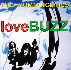 hummingbirds lovebuzz